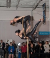 Cirque Sublime's Aerial Performers grab the attention of the February  Freeze crowd