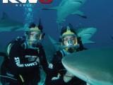 Copied from Kidscreen - KWS_Promotional