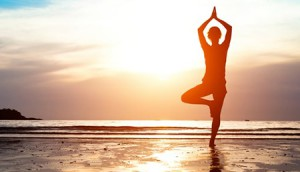 Copied from Realscreen - Namaste Yoga