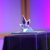2011 Panavision Award by Swarovski