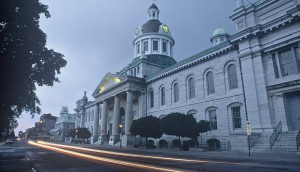 Kingston Profile Image