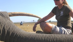 love nature - malawi - v3