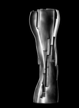 iris-award
