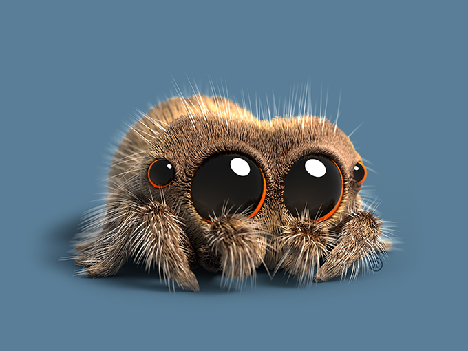 Copied from Kidscreen - LUCAS THE SPIDER