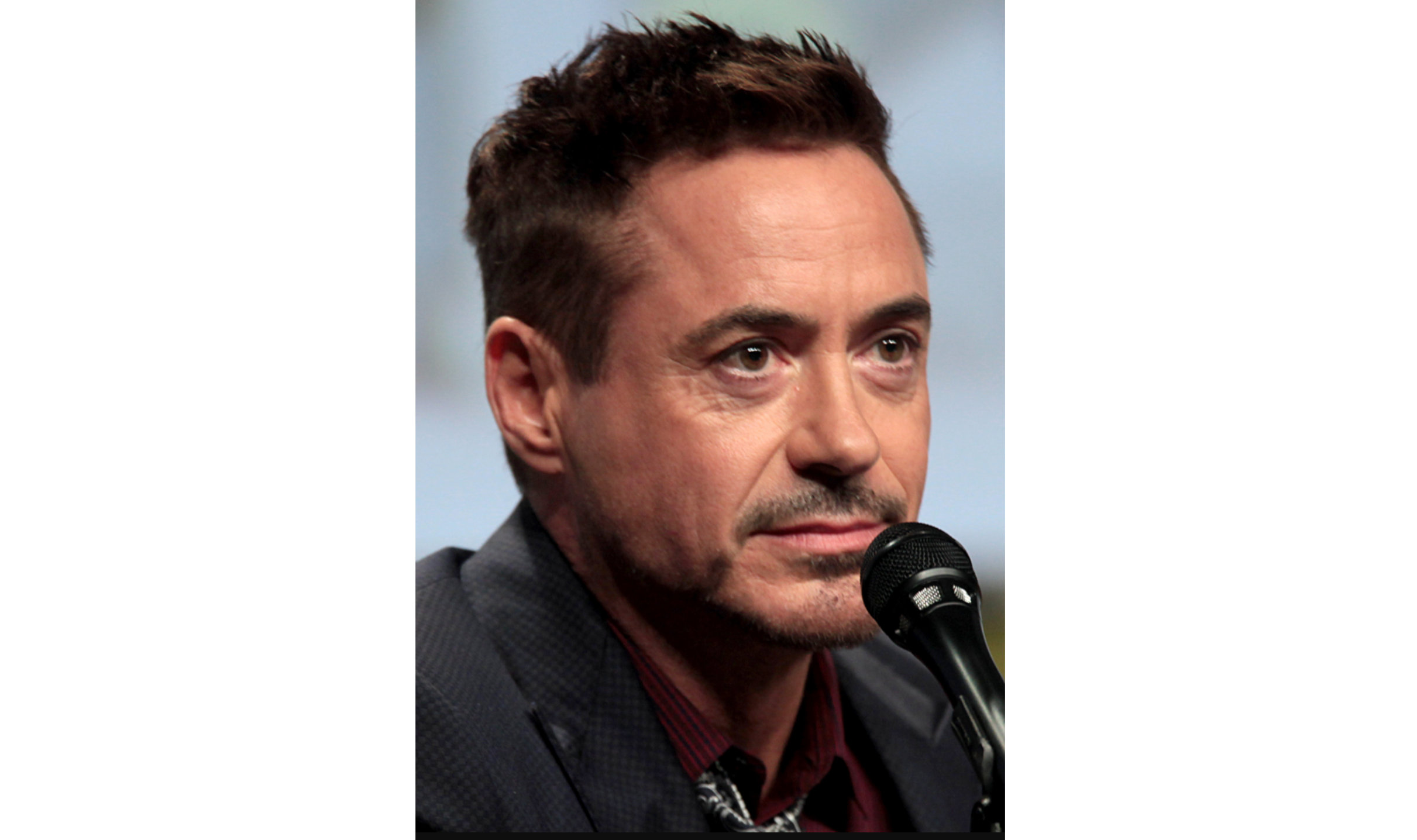 Robert Downey Jr. - credit Gage Skidmore